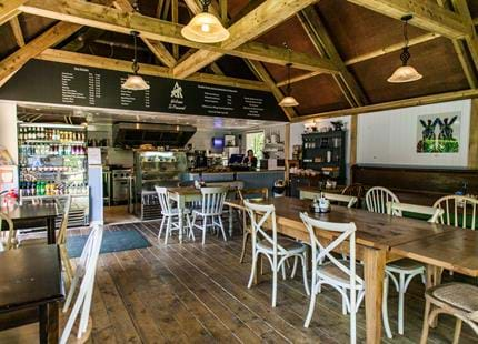 Pinewood Cafe at Port Lympne Hotel & Reserve in Kent, UK