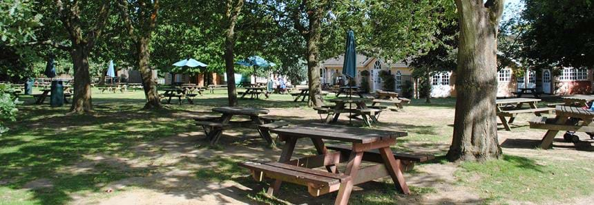 Picnic area at Howletts Wild Animal Park in Kent