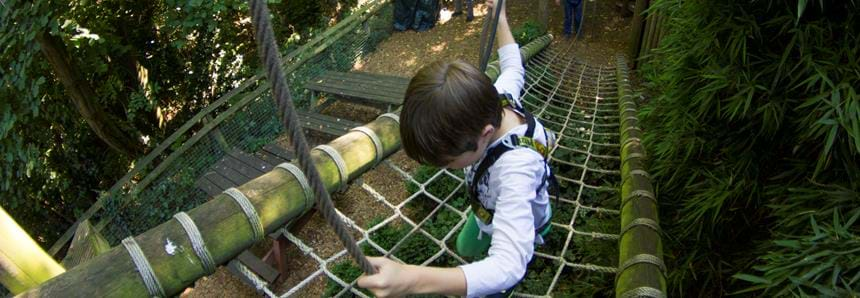 The first obstacle, Treetop Challenge