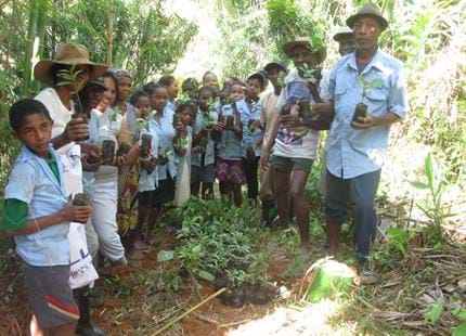 Reforestation with local school children at The Aspinall Foundation's Madagascar primate project