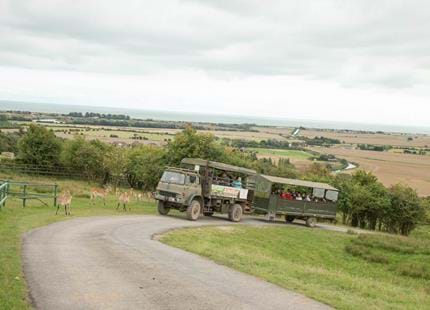 On Safari at Port Lympne Hotel & Reserve in Kent
