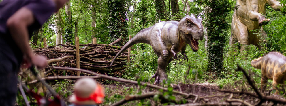 Dinosaur Name Generator - Port Lympne Prehistoric Playground