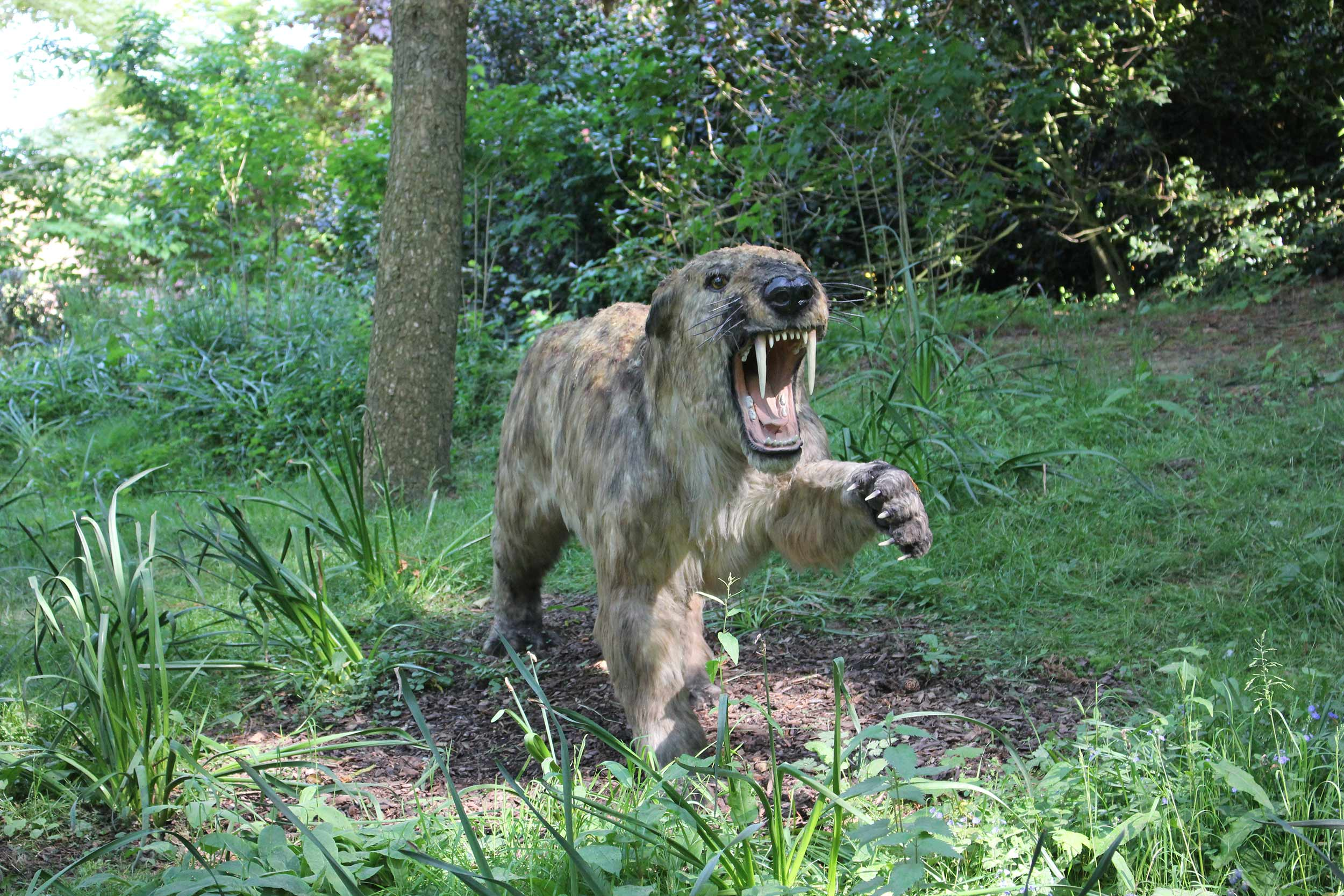 Image of: Documentary Animals Of The Ice Age At Howletts Wild Animal Park The Telegraph Wildlife Park Enjoyable Days Out At Howletts The Aspinall Foundation